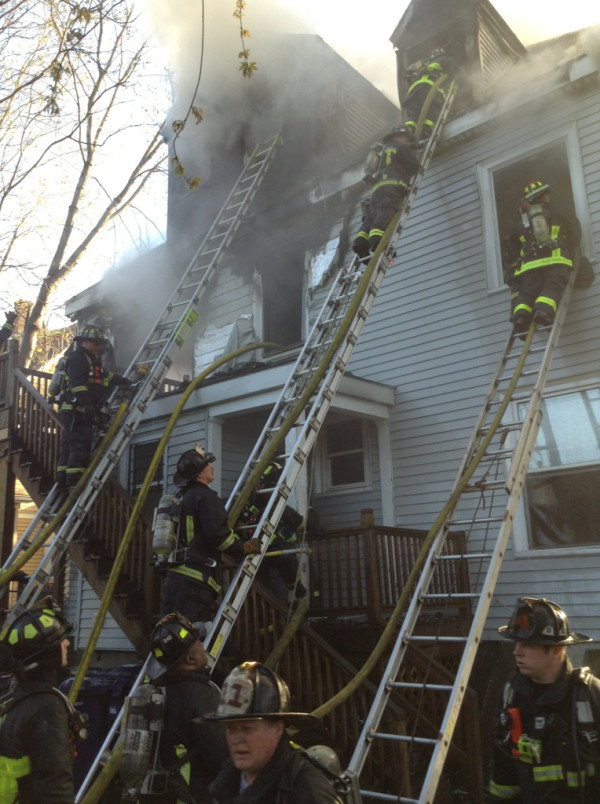 Photo courtesy of BFD
